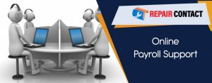 Online-Payroll-Support